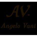 Angelo Vani